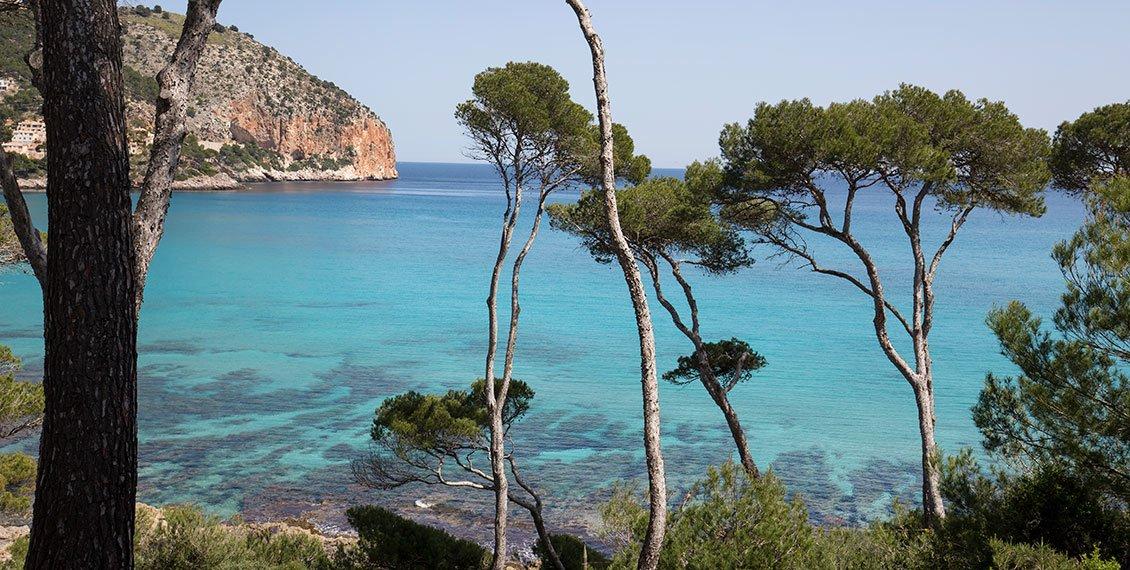 Naturaleza mediterránea